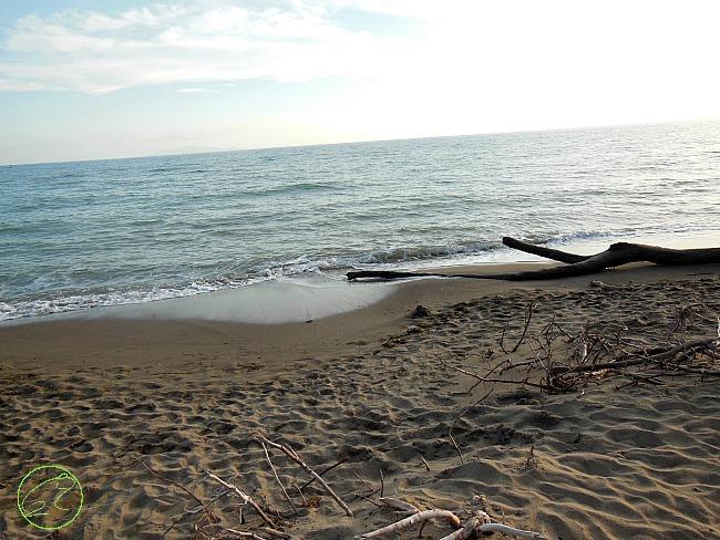 spiaggia feniglia sabbia