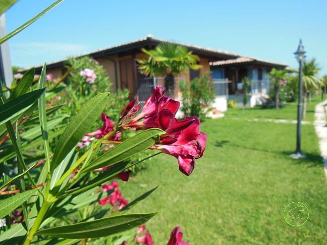 villini de luxe giardino