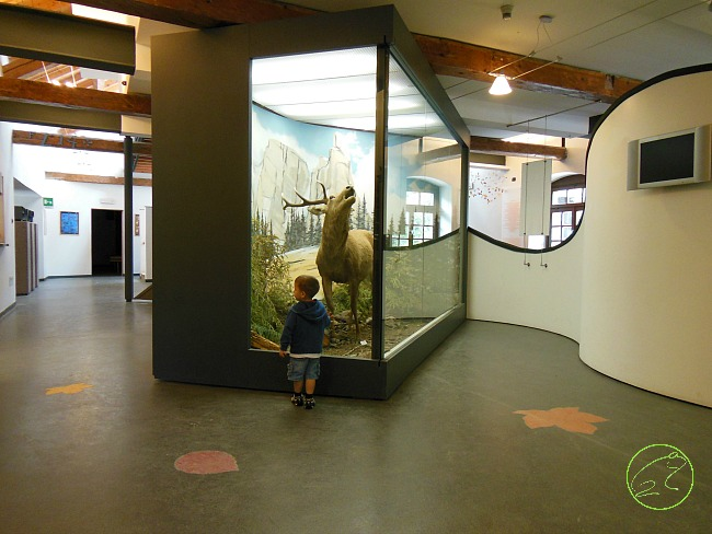 interno centro visitatori