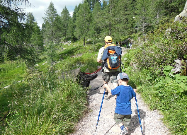 trekking con i cani