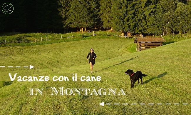 Vacanze con cane in montagna i viaggi dei rospi for Vacanze in montagna