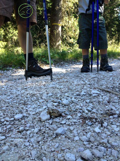 scarpe da trekking per montagna
