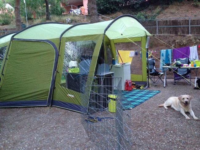 campeggio con bambini e cani