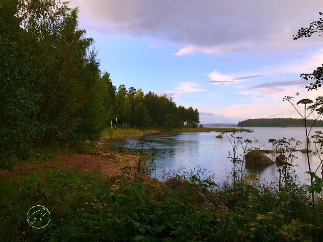 viaggio in finlandia natura 650