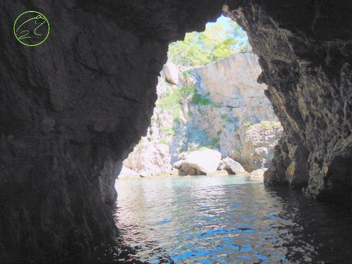le grotte di san domino isole tremiti