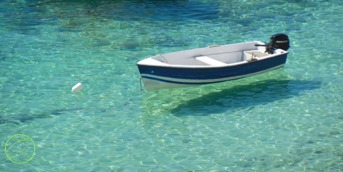 mare alle isole tremiti snorkeling