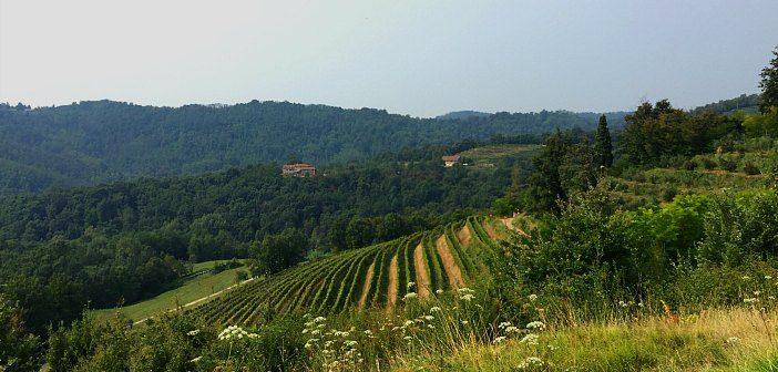 Parco di Montevecchia e Valle del Curone  l eden a 40km da Milano 505aefbdeca