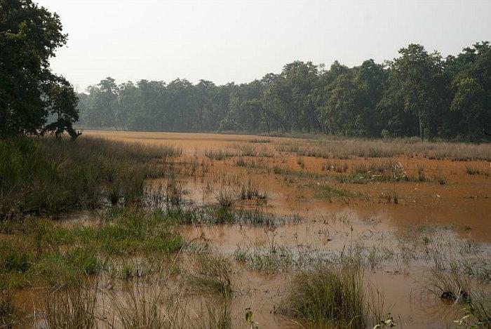 parco-del-chitwan