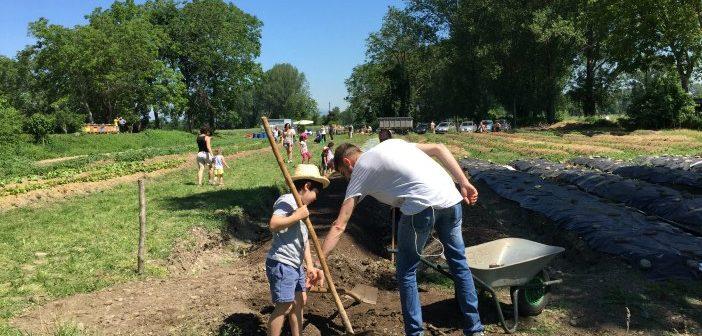 Fare l'orto con i bambini vicino a Milano