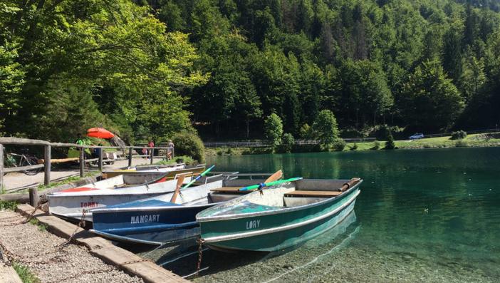 L'acqua verde cristallina dei Laghi di Fusine