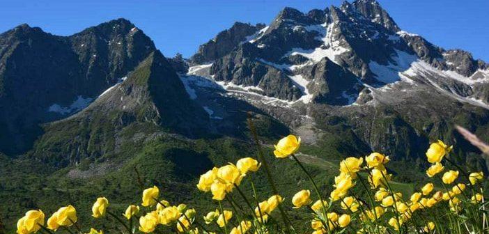 Passo del Tonale in estate, meta ideale per vacanze in montagna con bambini