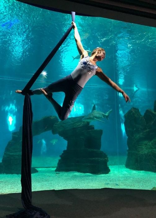 spettacoli all'acquario di genova