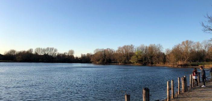 Bosco in città, trovare la natura a Milano