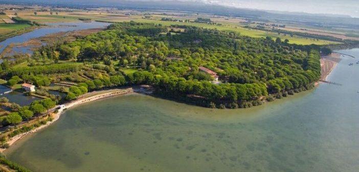 Camping Belvedere Pineta: dormire a Grado nella natura